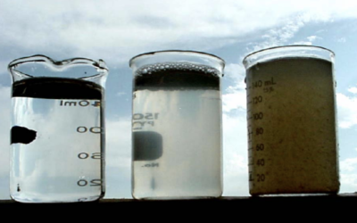 Testing the waters: I-PHYC seeks partners for effluent improvement