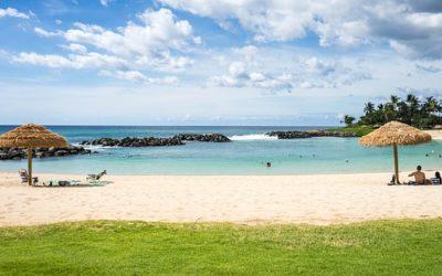 Chief Scientist says aloha to I-PHYC