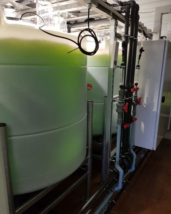 The I-Phyc Algal Biological Reactor in action